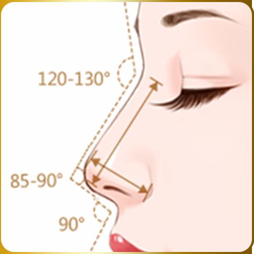 gốc mũi