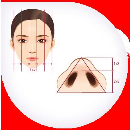 tỉ lệ mũi đẹp